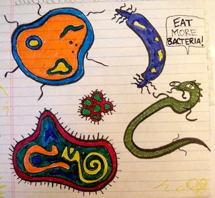 eat more bacteria