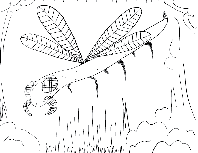 crude mono sketch of a long, dragonfly-like creature in a forest