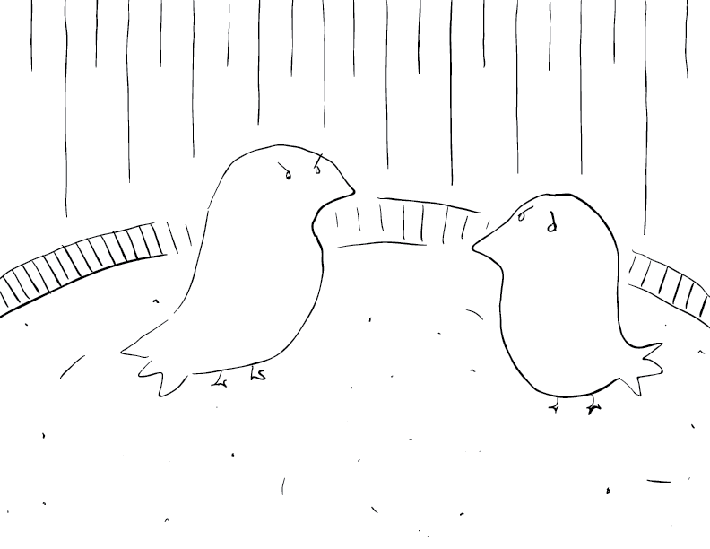crude mono sketch of two birds in a ring: one angry, one nervous