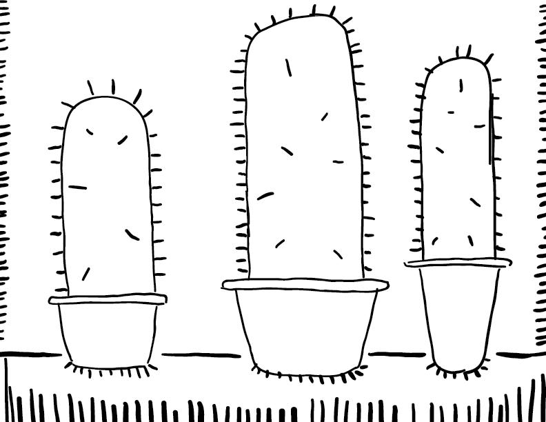crude mono sketch of three basic cacti in happy little pots