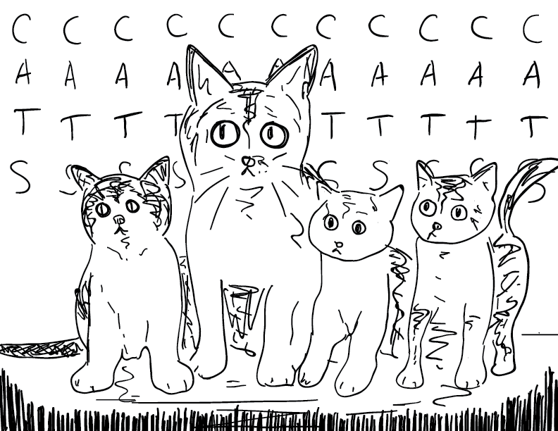 crude mono sketch of a handful of kittens and cats with the word Cats behind them again and again